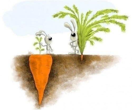 Arrêtez de comparer votre vie avec celle des autres