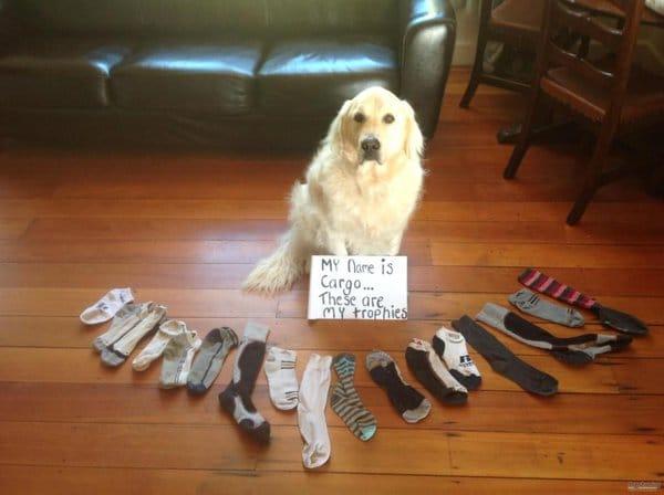 désencombrement de ses paires de chaussettes