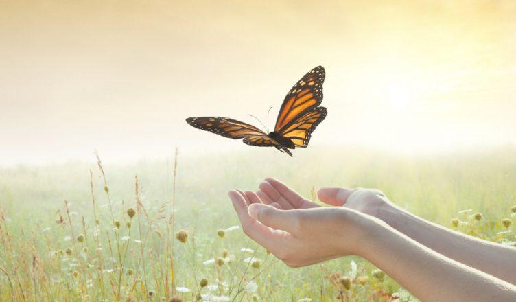 Minimalisme émotionnel : Cultiver le lâcher prise